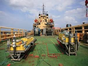 deck of seahorse